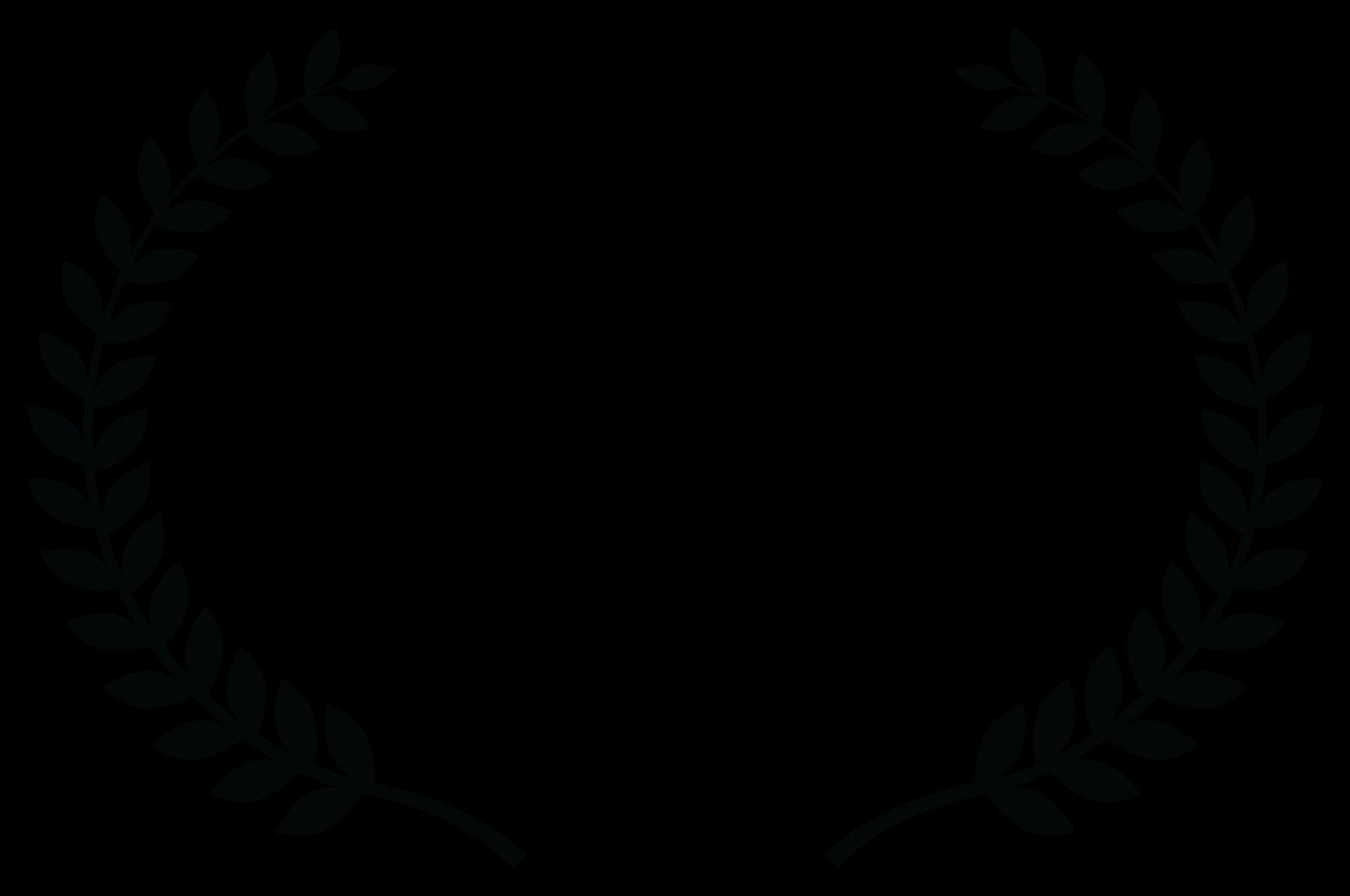 Laurels from the Festigious Film Festival